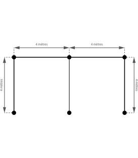 Abri x2 - (4.00m x 8.00m) - 45mm - monopente